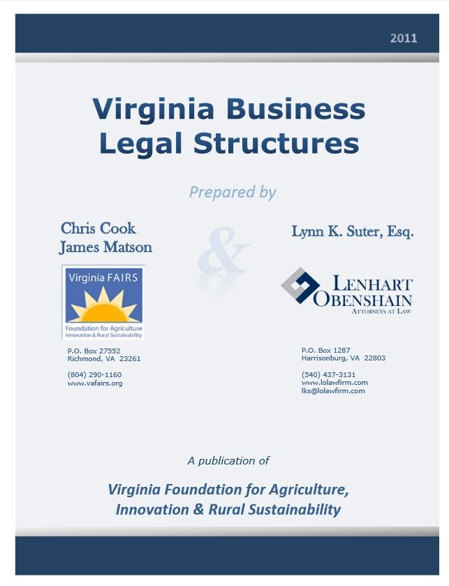 Virginia Business Legal Structure