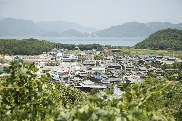 アートツーリズムの代表例として、岡山県の直島が挙げられる。過疎化しつつある周辺の島も含め、いくつもの美術館とホテルをつくり、今や年間35万人が訪れる島となっている。