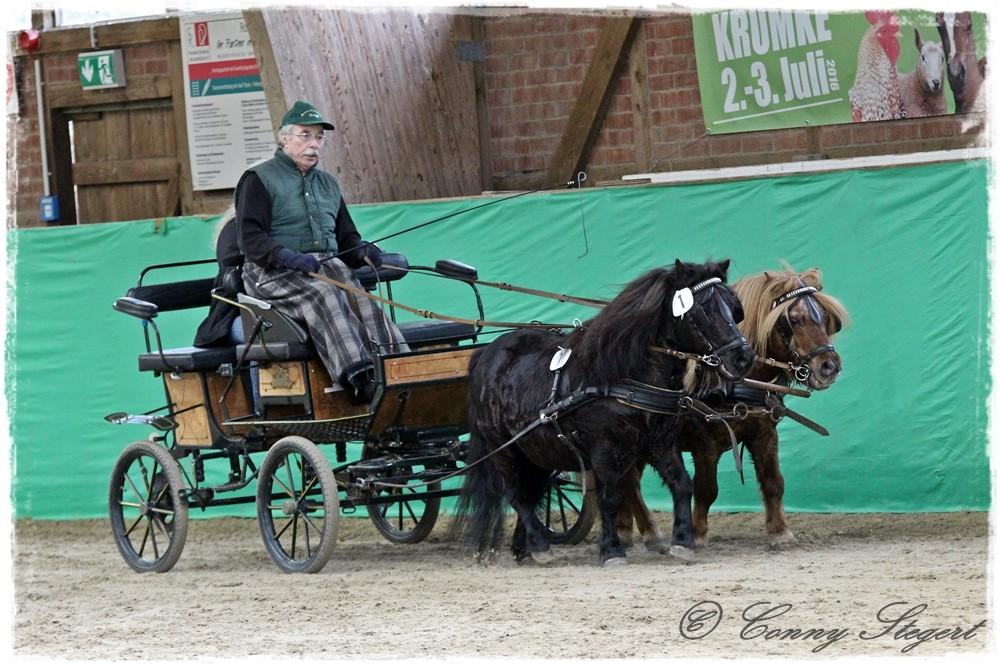 Astor & Apollo (Bernhard Beye, Stendal)