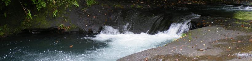 阿蘇の渓流