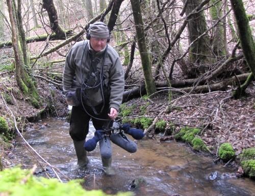 Dans le Morvan remontée d'un cours d'eau