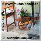 Muba-Juni-Suchbild