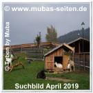 Muba-Apr.-Suchbild