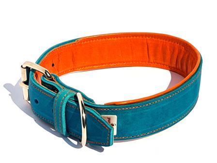 LEderhalsband Hund Hundehalsband Leder türkis gepolstert orangenes Futterleder 4 cm breit  Handarbeit