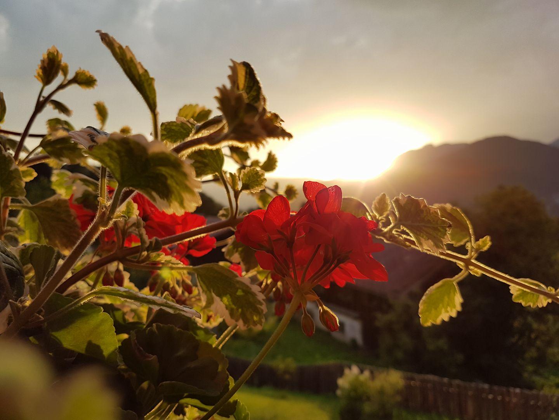 stimmungsvolle Sonnenuntergänge