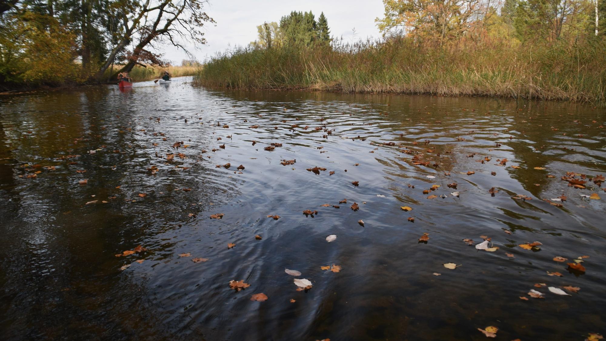 AOC Herbsttreffen am Staffelsee