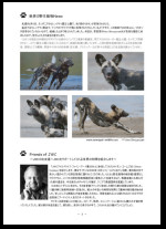 Thank ou for publishing Japan Wildlife Center (JWC) in Tokio / Japan