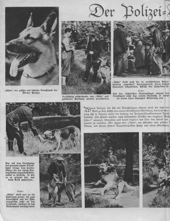 Österreichische Woche vom 12.09.1935