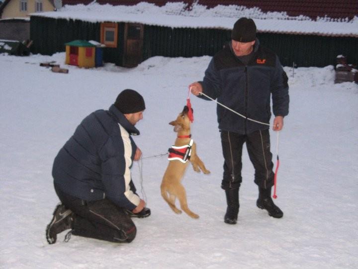 Erstes Training