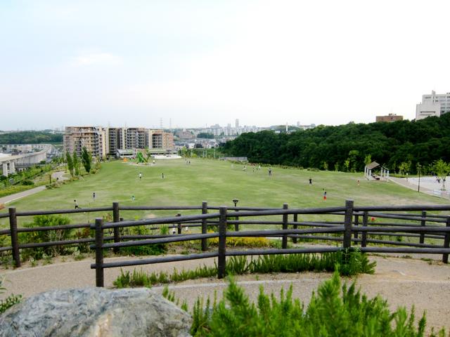 彩都西公園からの風景