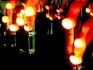 いばらき竹灯籠