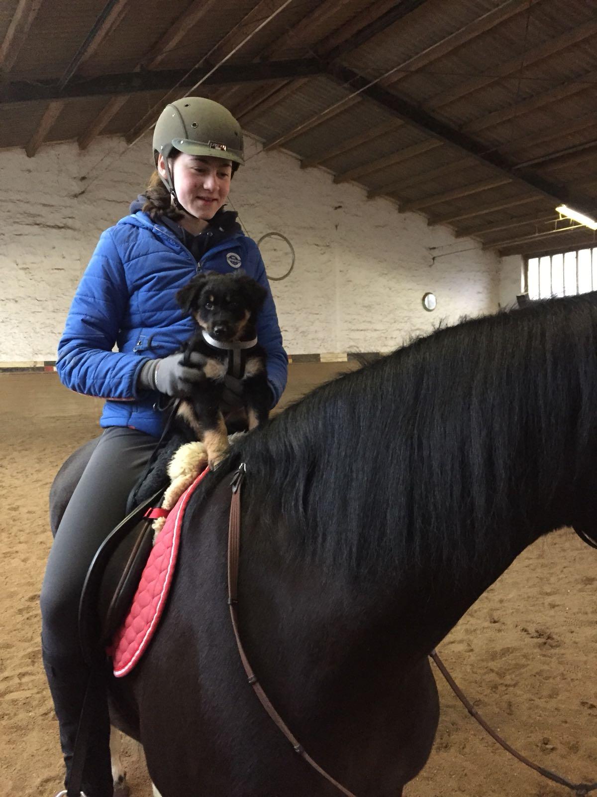 "Coby auf Pferd ""Lisa"""