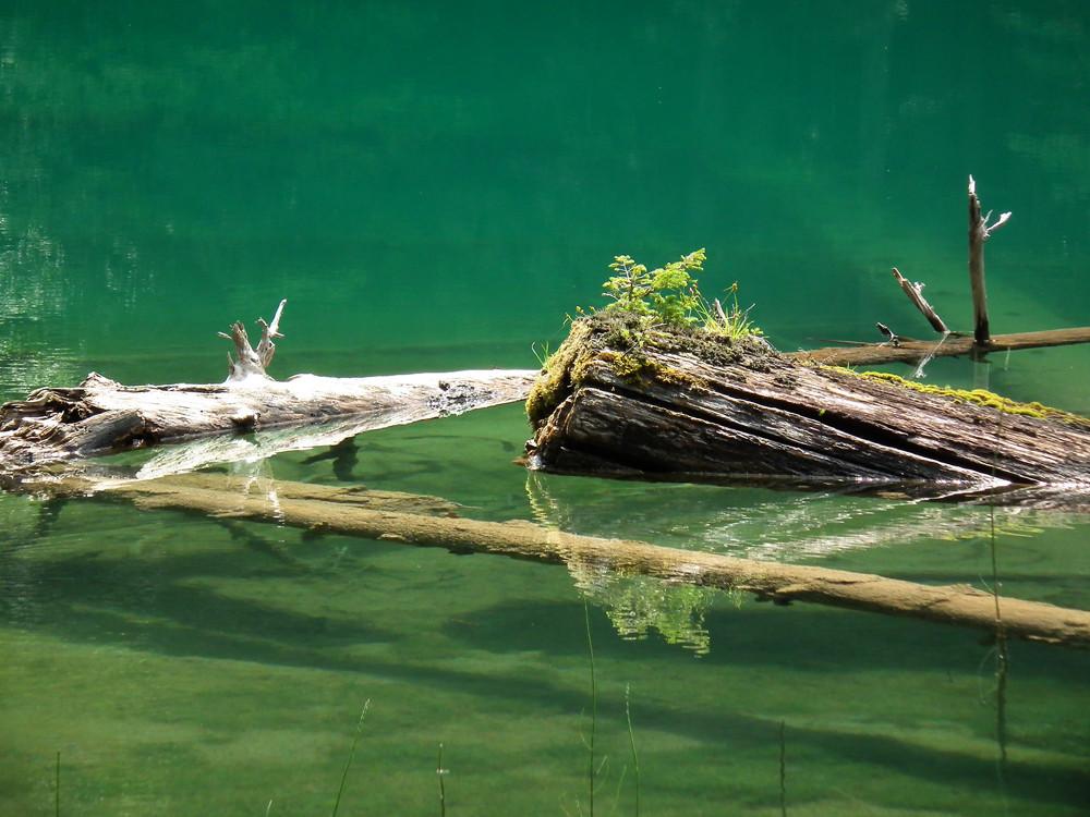 Bodensee am Nassfeld