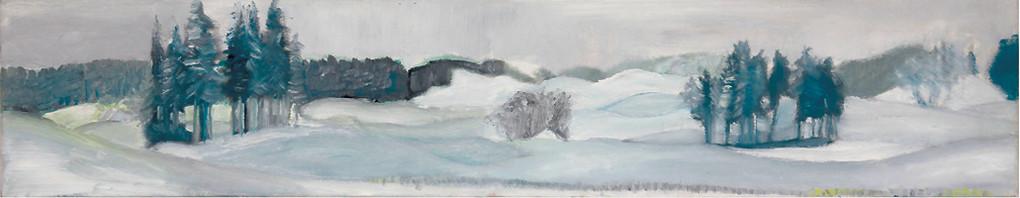 Dorothea Schrade, Drumlinland im Schnee, 2011, Öl auf Leinwand, 20 x 100 cm