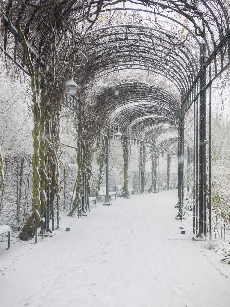 Kamerakata: Winter Wonderland