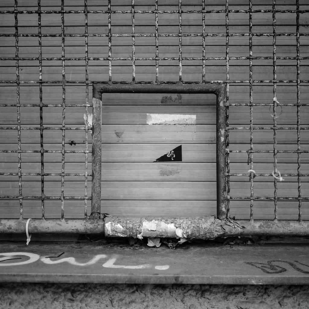 Kamerakata: Gitter