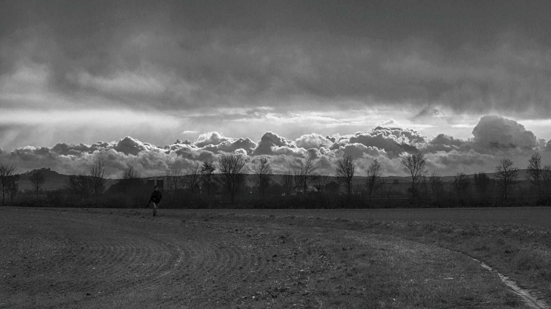 Babblfisch: Wolken, keine Berge