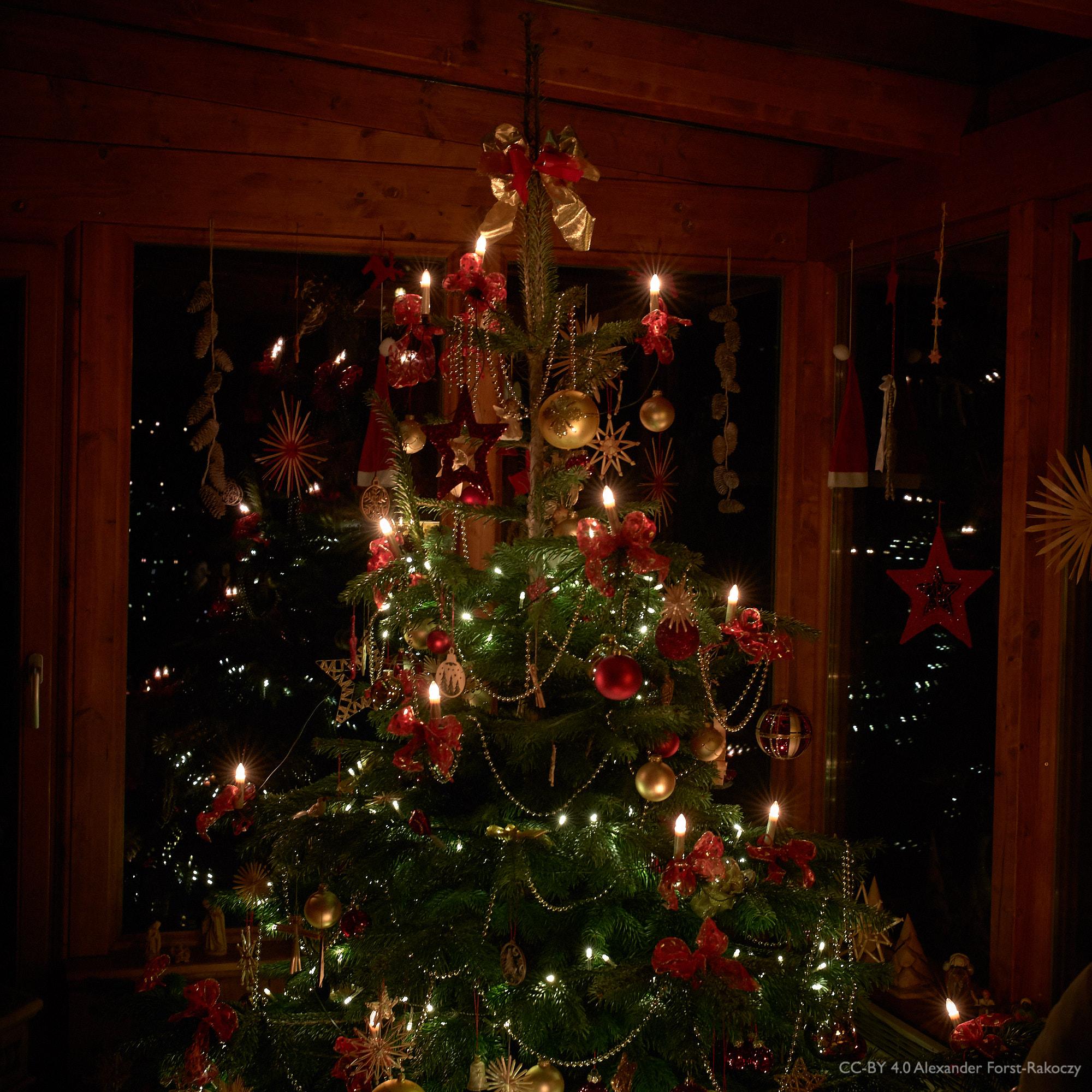 Alfora: Der logische Abschluss: der Christbaum! ;-)