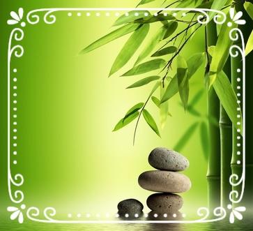 """"""" Développer une zen attitude"""" Stage yoga & relaxation sur commande."""