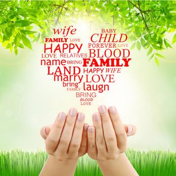 Gérer la dynamique émotionnelle de la famille.