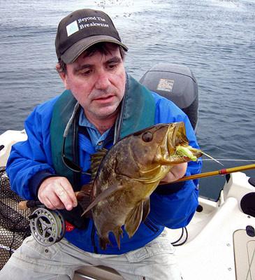 Calico bass fly fishing topwater San Diego  La Jolla
