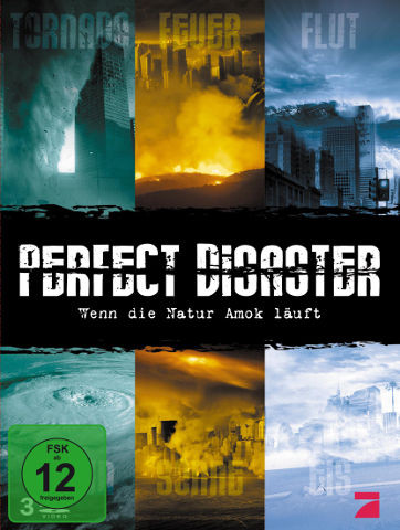 DVD-Cover Perfect Disaster
