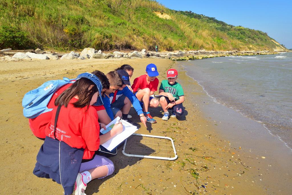 Beach Monitoring Protocol