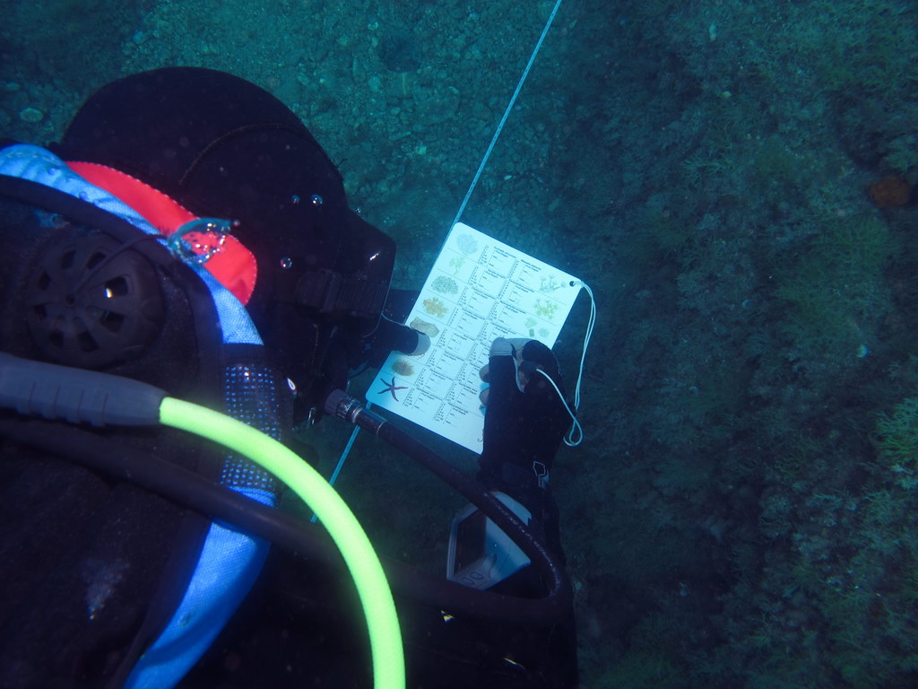 Underwater Monitoring Protocol
