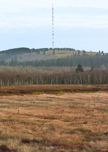 Blick über das Rote Moor in Richtung Heidelstein.