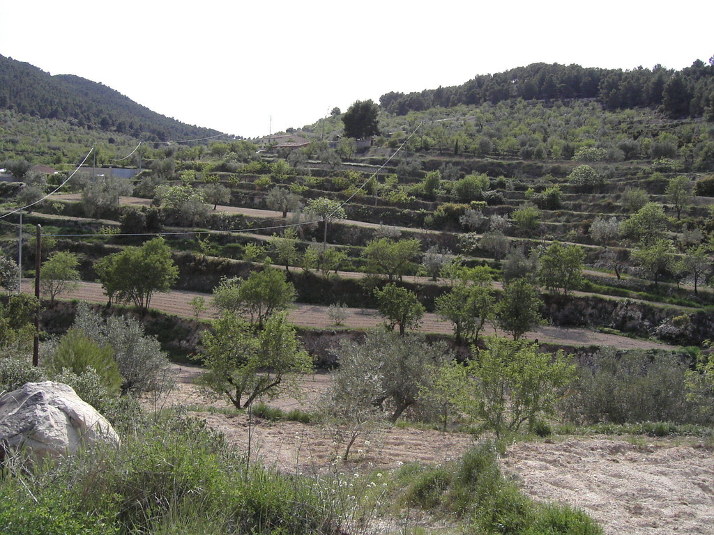 In Spanien kurz vor der Finca
