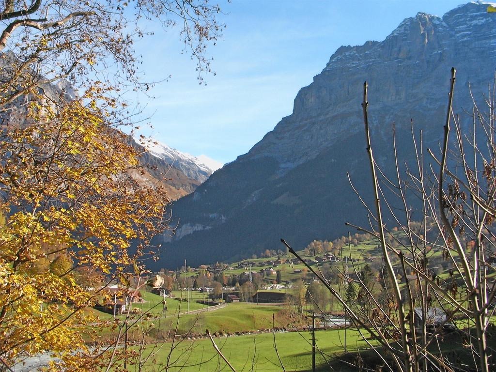 auf der Fahrt nach Grindelwald