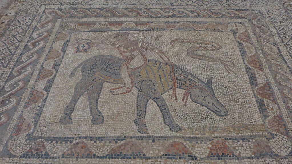 3.Tag - Volubilis - Mosaik eines Akrobaten