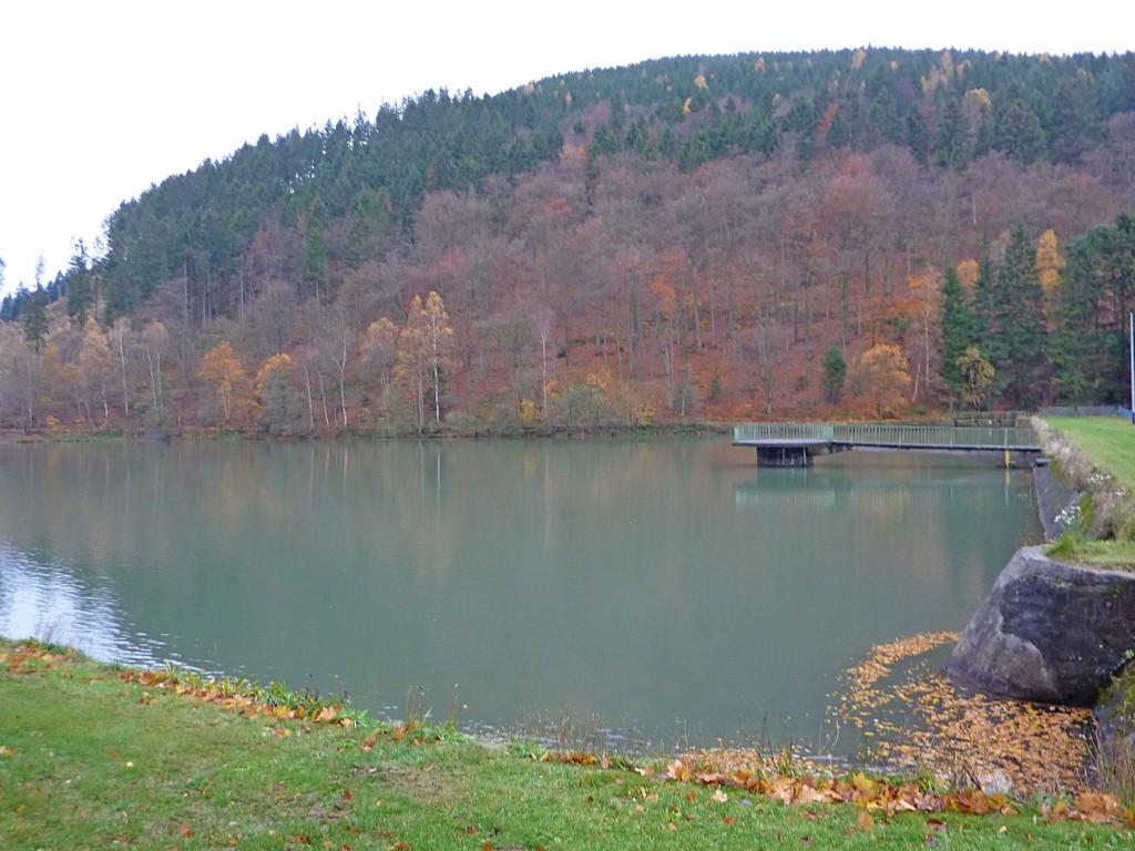 Herzberger Teich am Rammelsberg - zur Nutzung der Wasserkraft im Rammelsberg