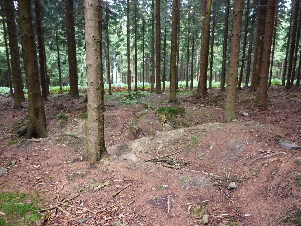 4. Tag - Hürtgenwald/ehm. Schützengräben