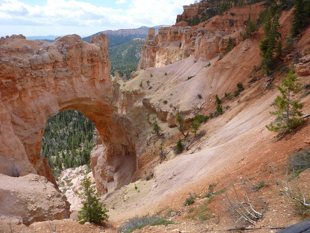 Auf Tour am Bryce Canyon - Natural Brigde 2.629 m