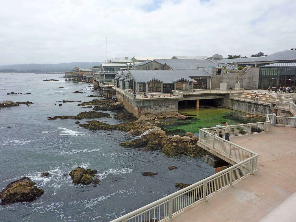 Monterey - Aquarium