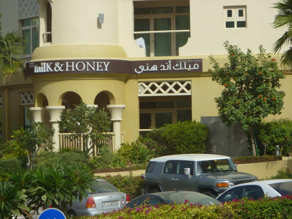 1.Tag - Dubai/Palme -Fließen hier wirklich Milch und Honig?