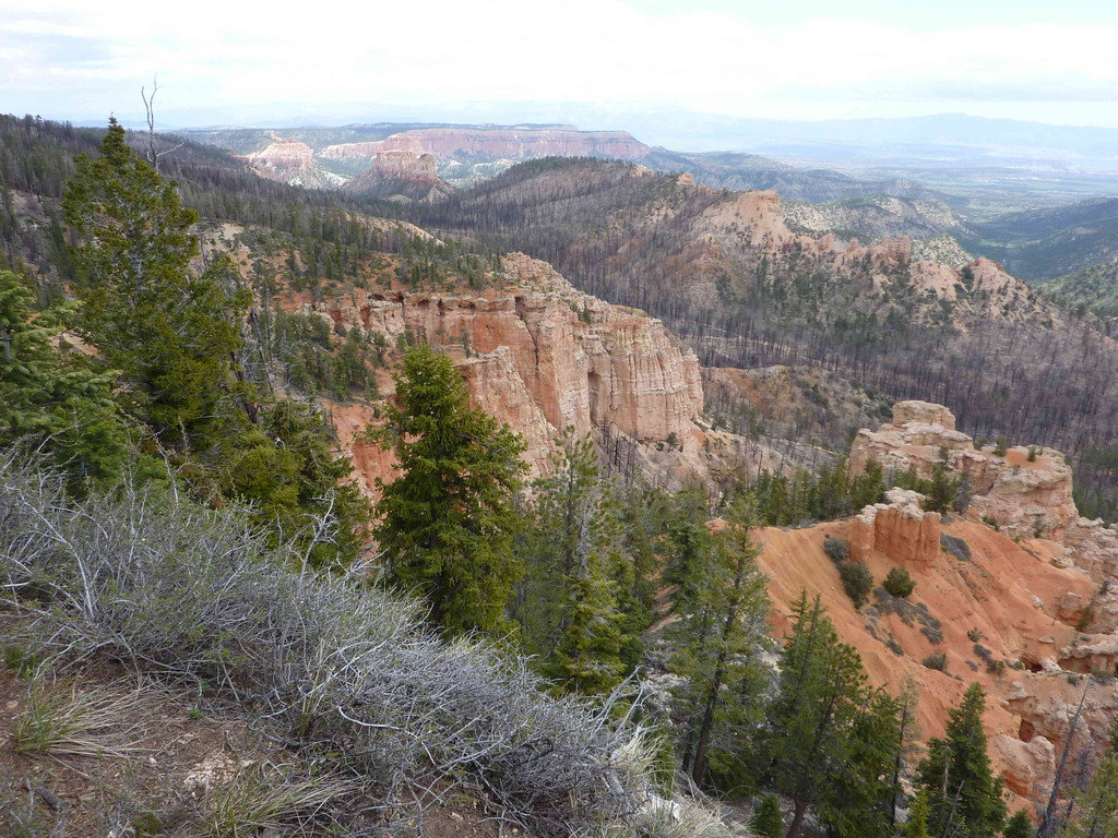 Auf Tour am Bryce Canyon - Farview Point 2.688 m