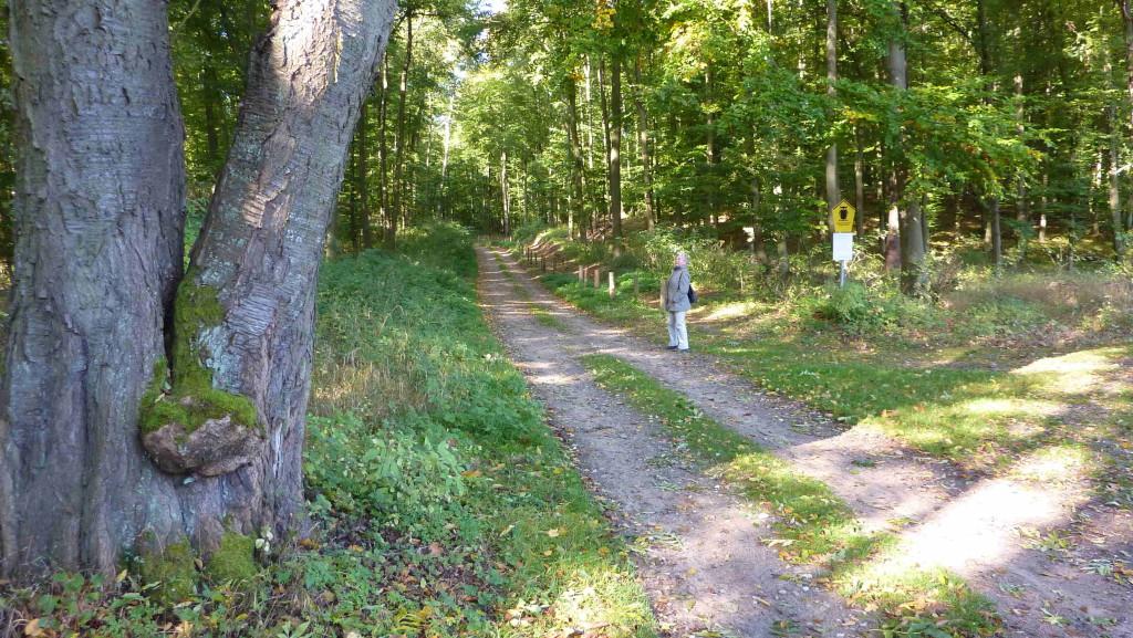 Wanderung zur Feldberger Hütte