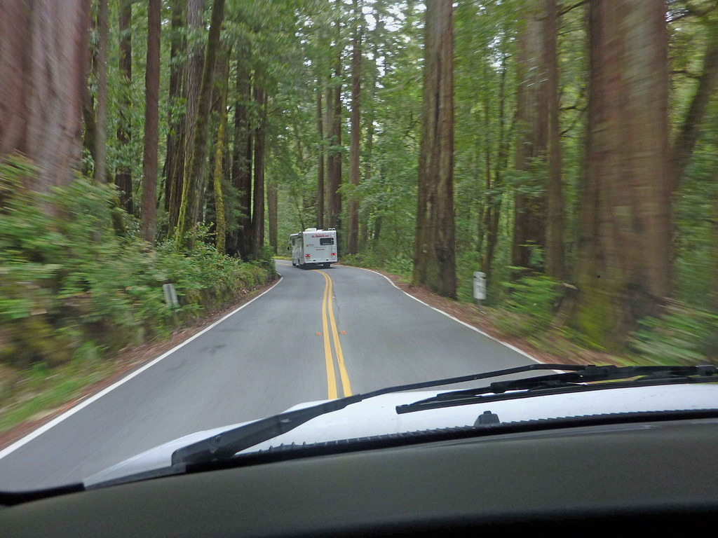 Auf Tour von Big Basin State Park nach Monterey