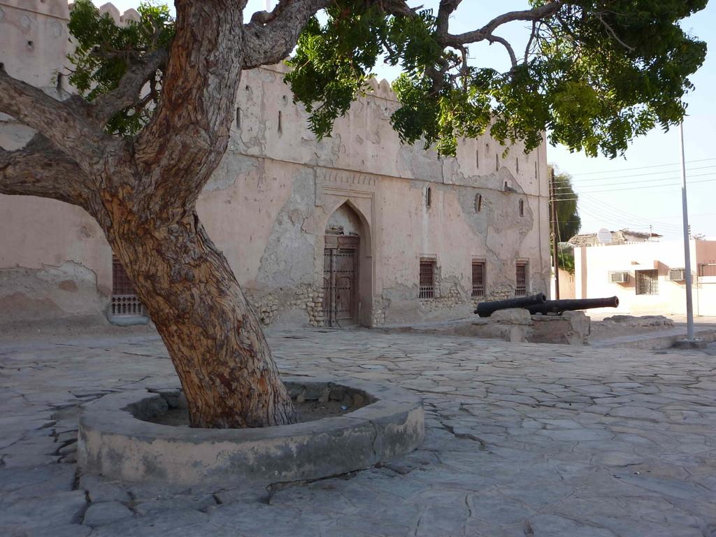 6. Tag - Auf der Fahrt von Sur nach Muscat - Quiryat