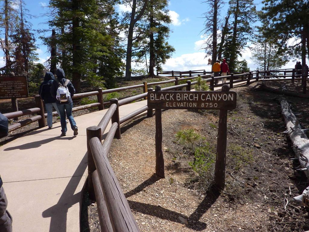 Auf Tour am Bryce Canyon bei 3 Grad Plus + leichtem Schneefall - 2.667 m