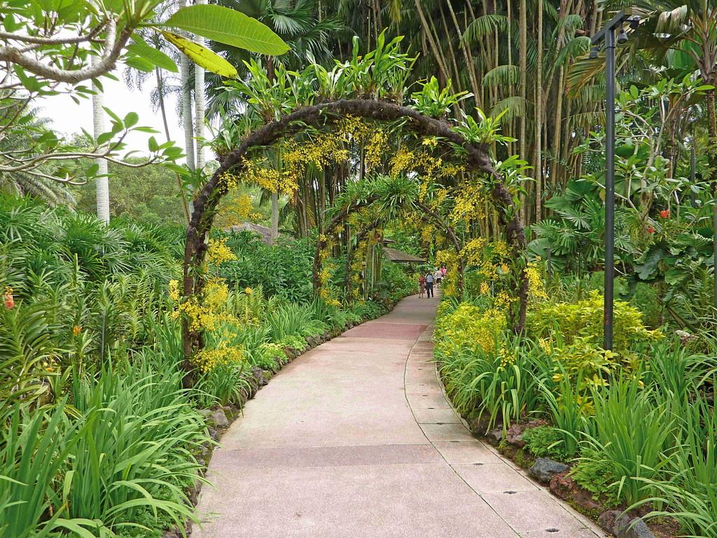 Singapur - Botanischer Garten