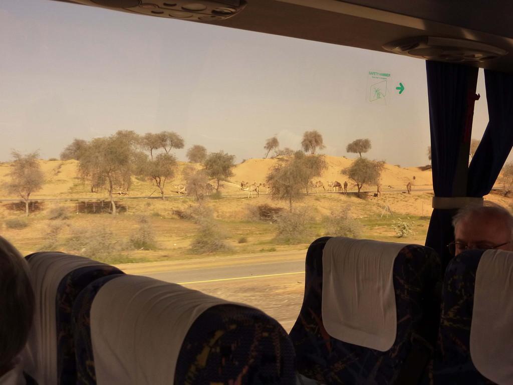 14. Tag - Fahrt v. Fujaihra nach Dubai