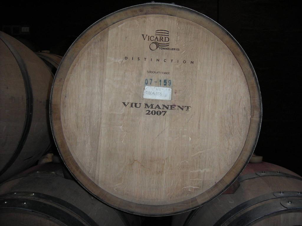 """Besuch des Weinguts """"Viu Manent"""""""