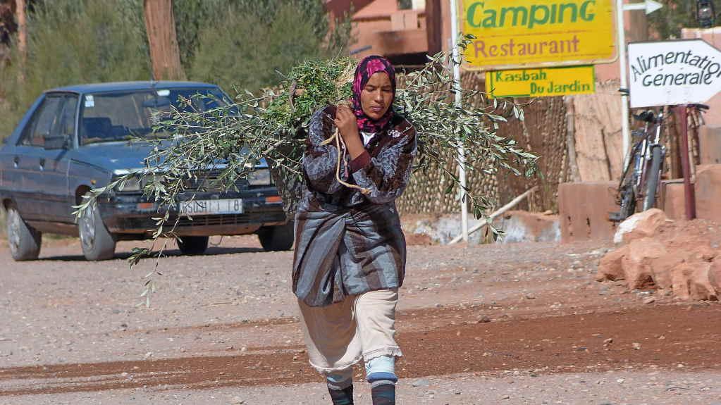 8. Tag - Fahrt von Quarzazate nach Marrakesch