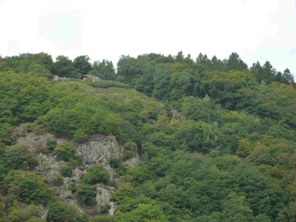 10.9.2010 Saarfahrt v. Mettlach nach Merzig