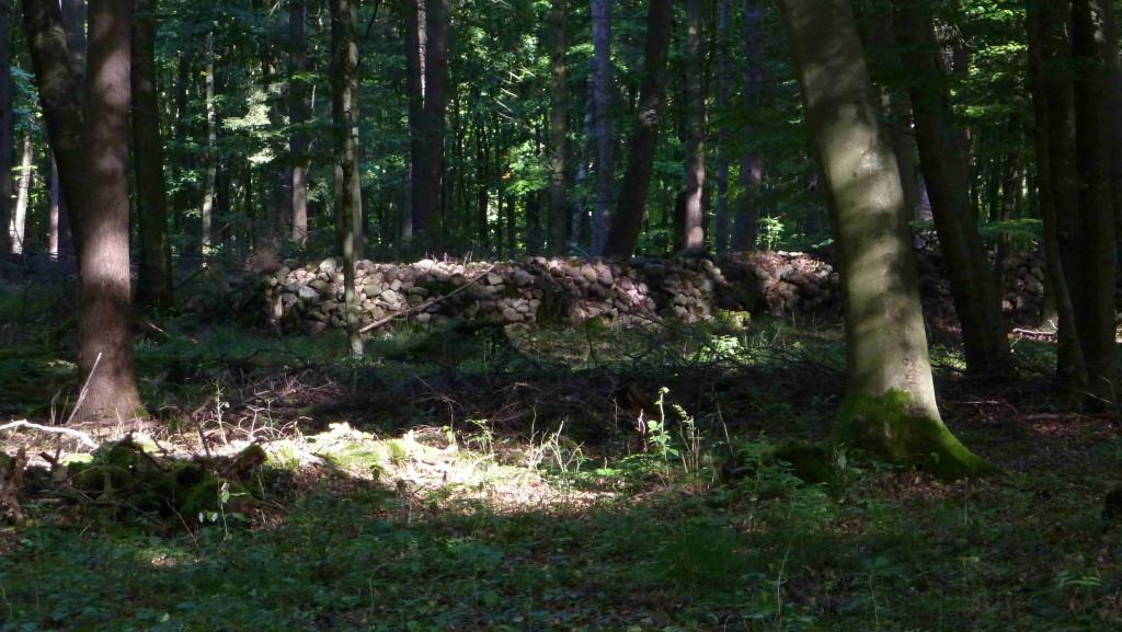 ca. 3000 Jahre alte Steinhügelgräber