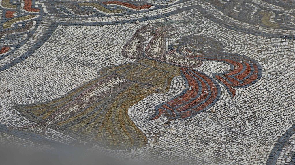 3.Tag - Volubilis - Mosaik