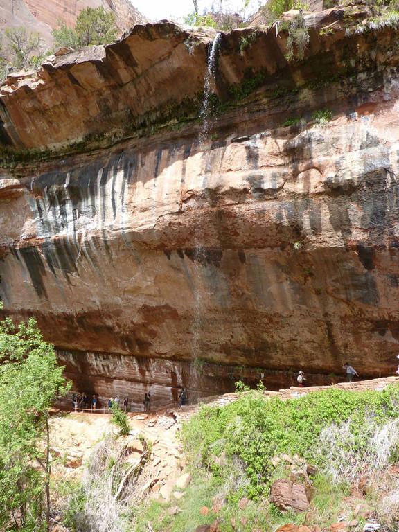 Wanderung im Zion Nationalpark von Grotto, über Emerald Pools, zur Zion Lodge